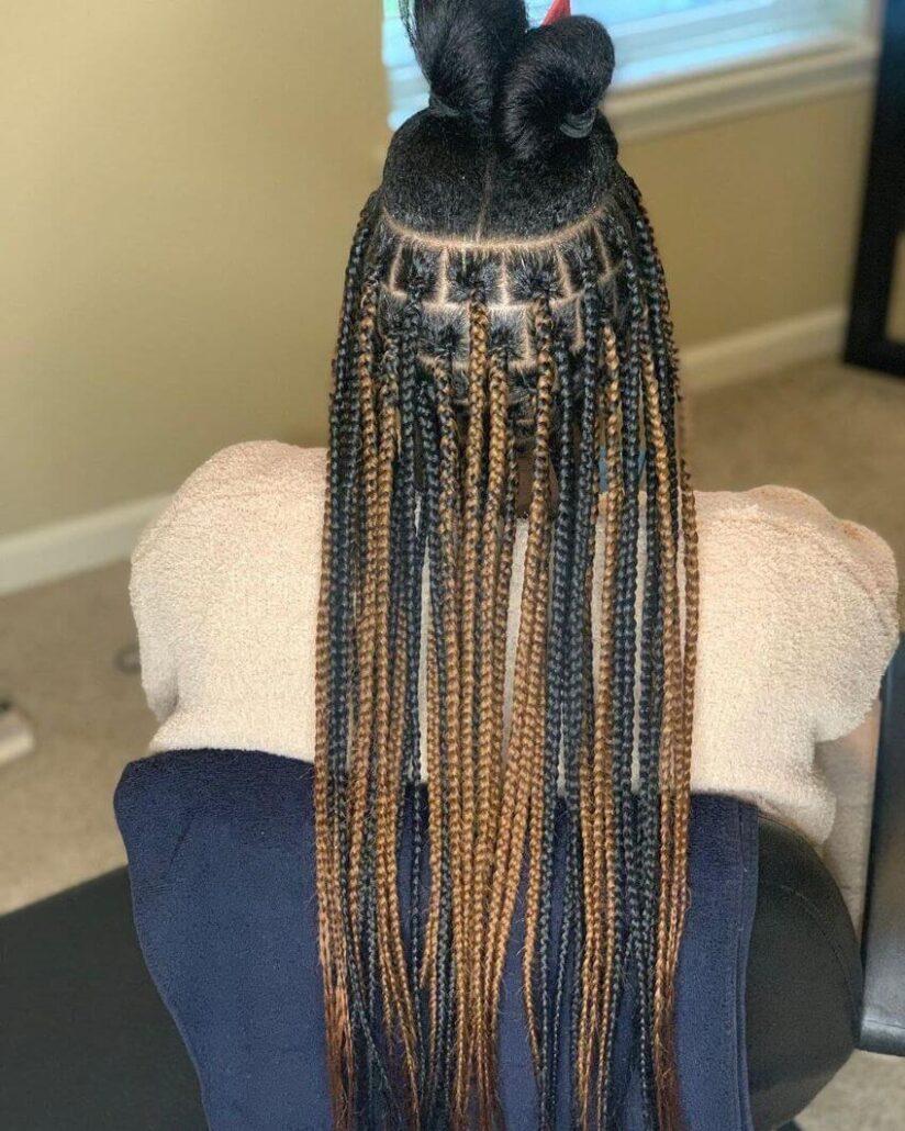 Tribal Braids With Kinky Dual Bun On Top