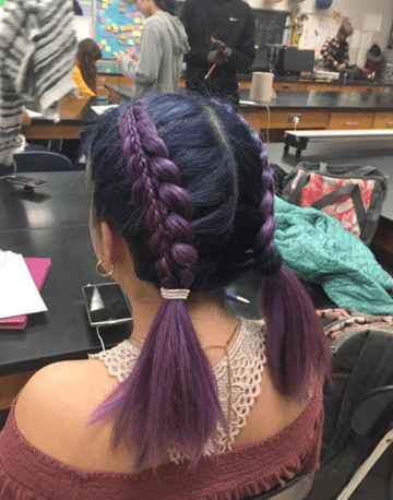 Center Parted Hair With Thick Braids